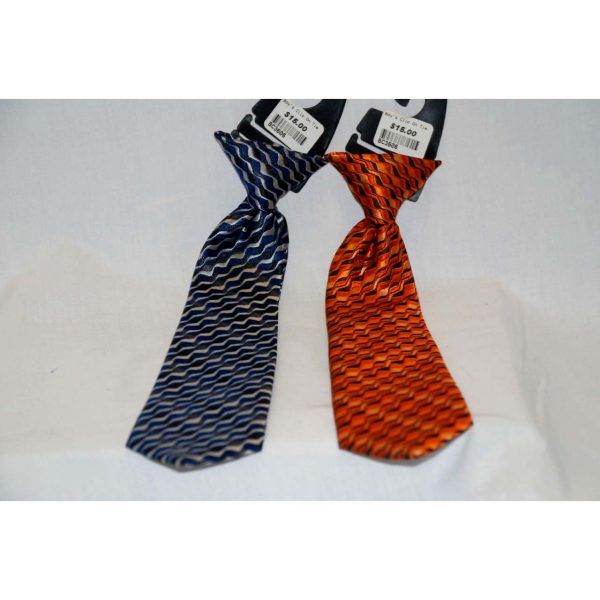 Boy Clip on Ties